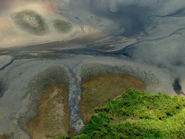 freshwater from above
