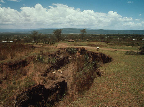 Soil erosion and degradation threats wwf soil erosion in kenya sciox Images