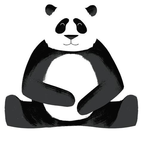 Made With Code Panda Drawing