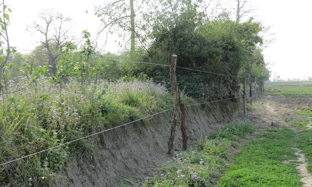 Newly installed fence in the Karnali corridor