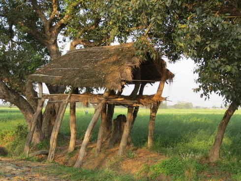A shelter in a field.