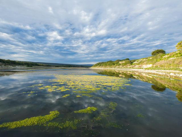 De Hoop wetland