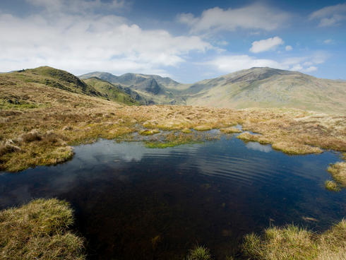 A tarn and peat bog in the Lake District, UK.
