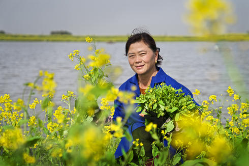 Liu Ailan, a carp farmer near Honghu, uses grasses and other local plants to feed her fish.