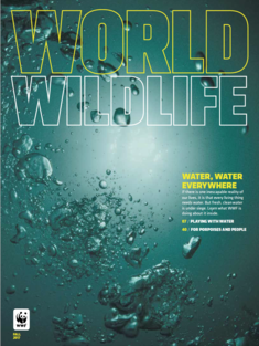 World Wildlife Magazine Fall 2017 cover