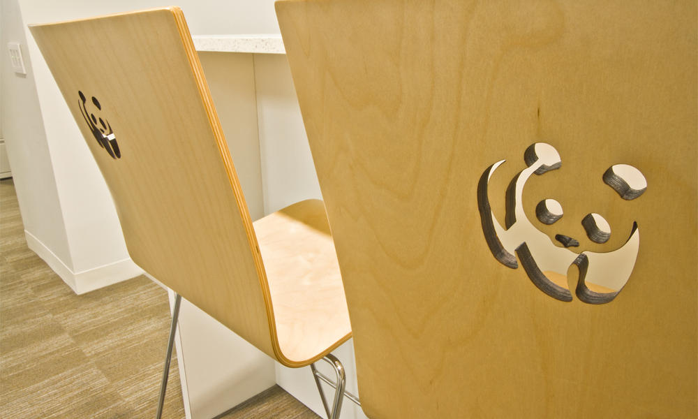 Branded chairs at WWF green HQ