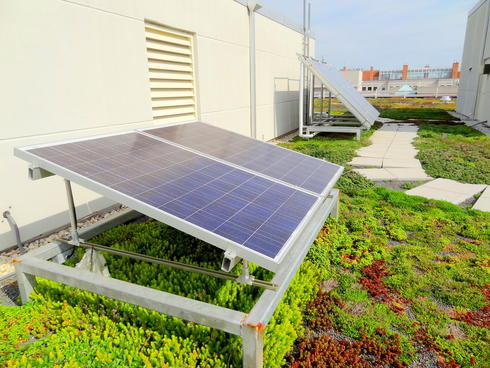 WWF green HQ - solar panels on green roof