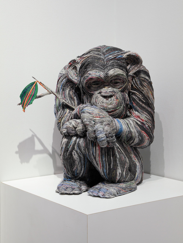 gallery chimp winter2017