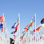 UN flags