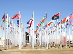 Cop22 flags