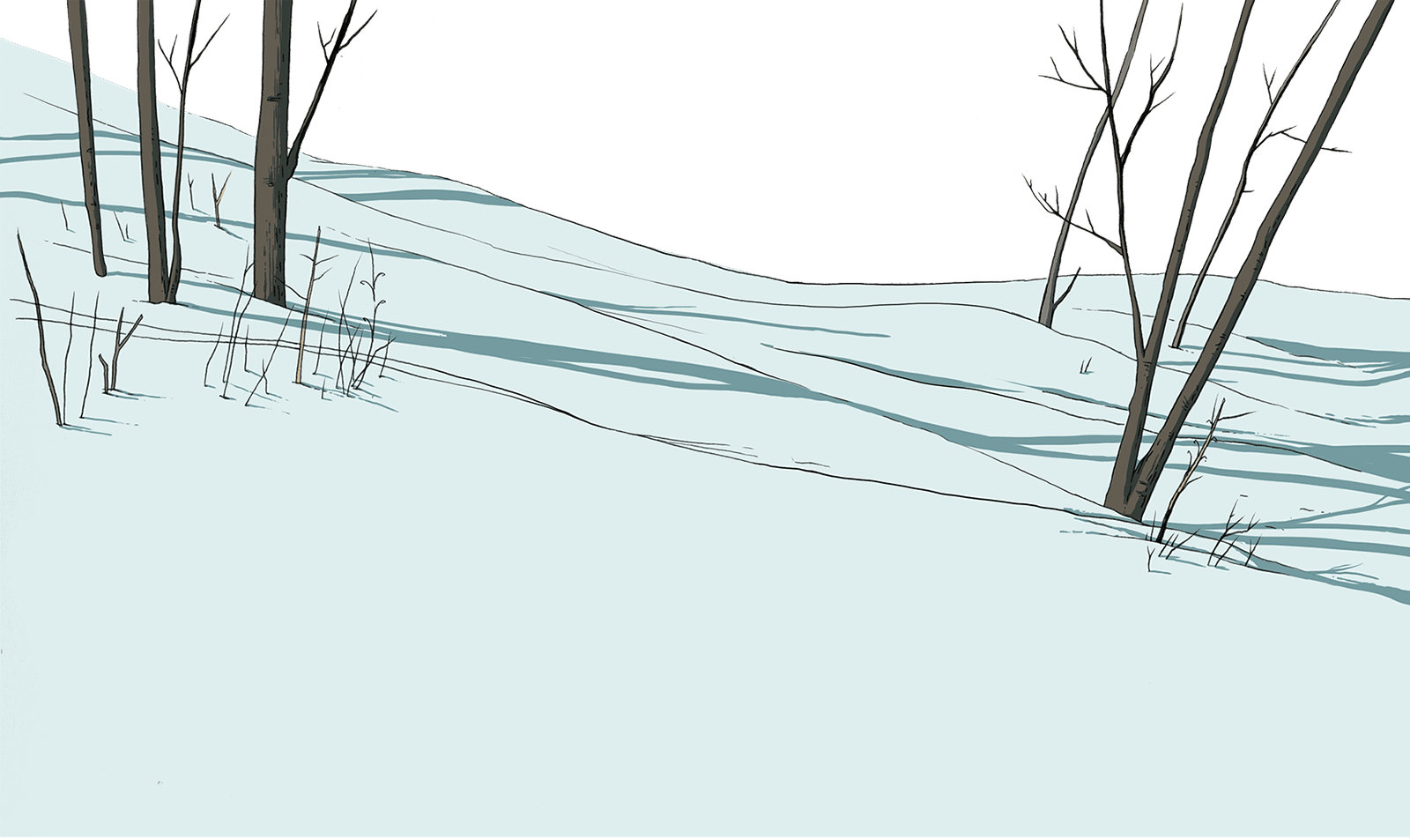 snow foreground with trees