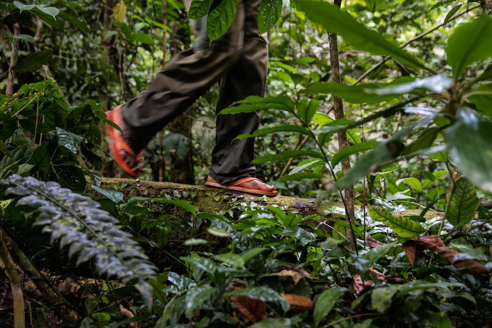 Congo feet spring2018