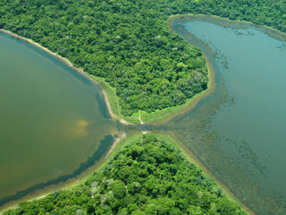 Two lakes in the Pantanal