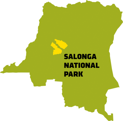 salonga map spring2018