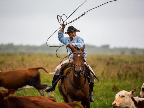 granchaco cowboy summer2018