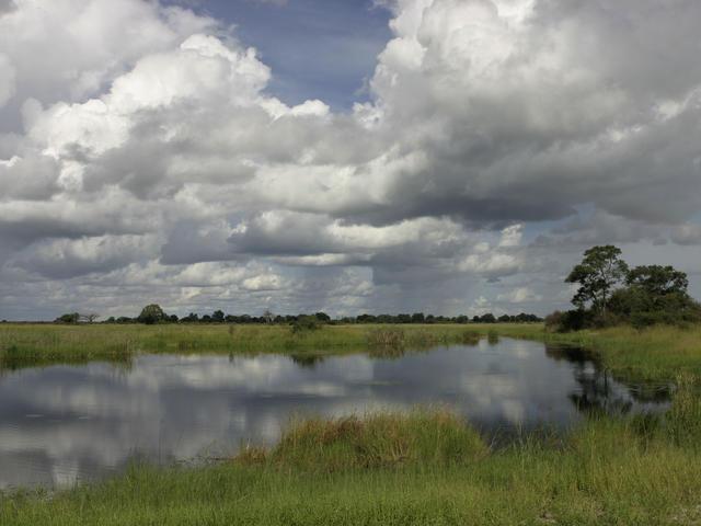 Kwandu Conservancy