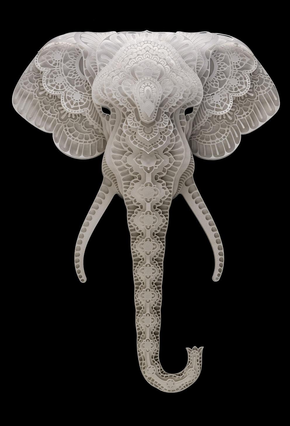 cabral elephant summer2018