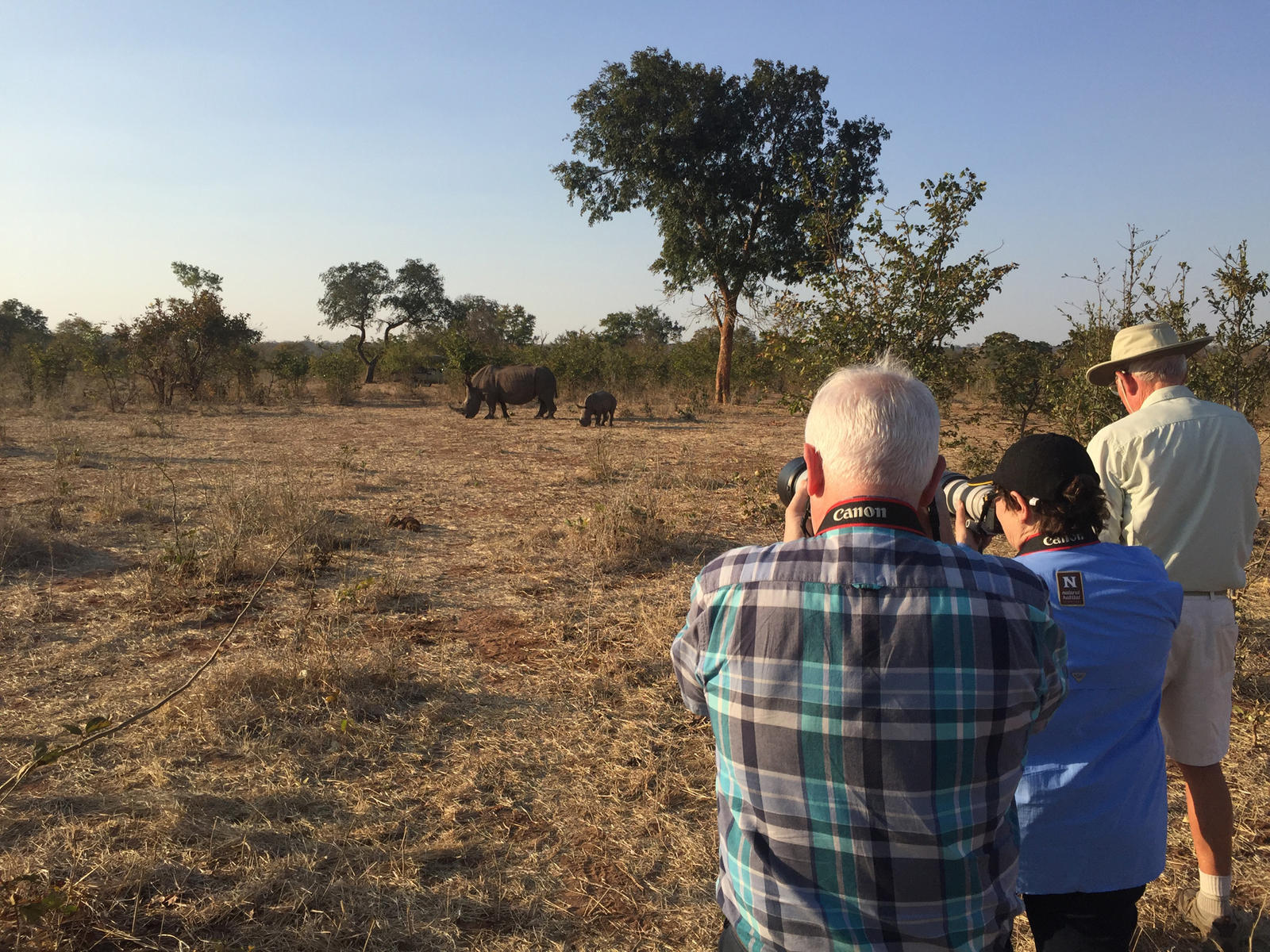 discover rhino photog summer2018