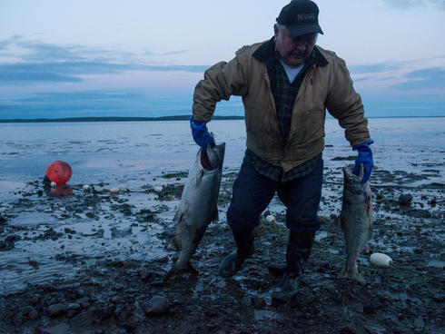 fisher with salmon in Bristol Bay