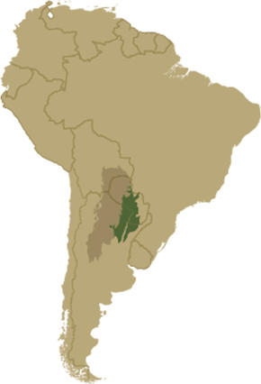 Map of the Gran Chaco within South America