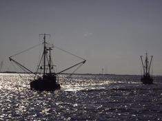 Pirate fishing 8.9.2012 hero and circle hi 16874