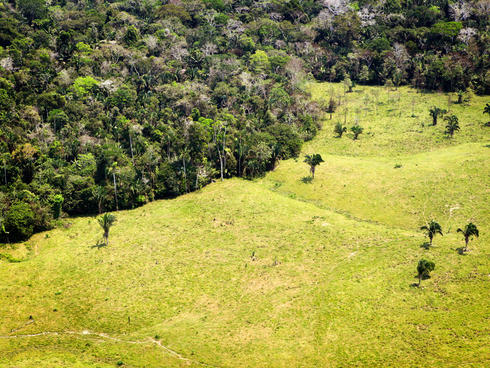Aerial shot showing deforestation in Amazon rainforest in Acre, Brazil.
