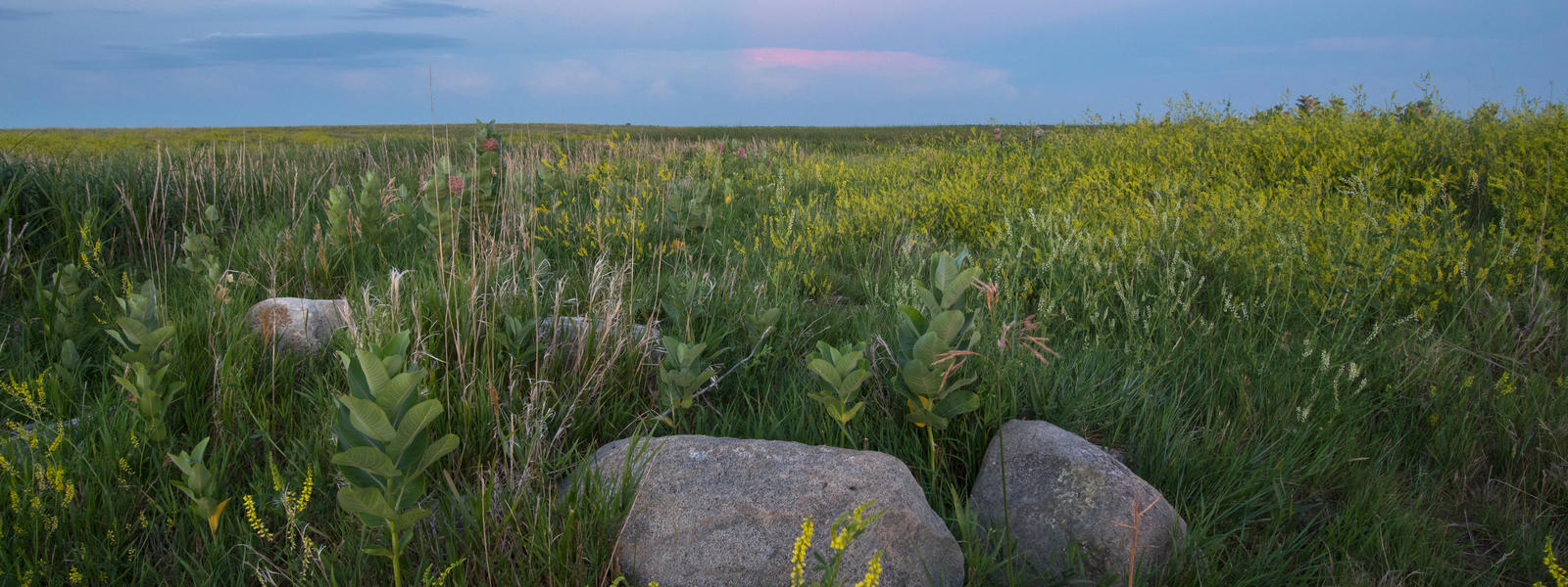 working rangelands in South Dakota
