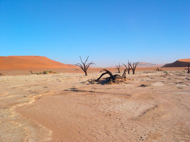 Natural Resources Provided By Deserts