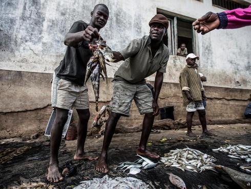 fish sale Mozambique James Morgan WW146854