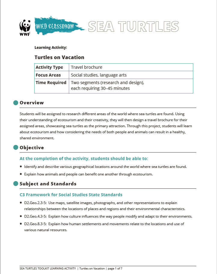 Sea Turtle Toolkit | Educators Toolkits | WWF
