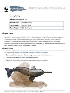 Wild Classroom Dolphin Math Activity Preview Page