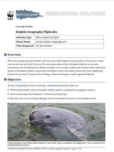 Wild Classroom Dolphin Social Studies Activity Preview Page