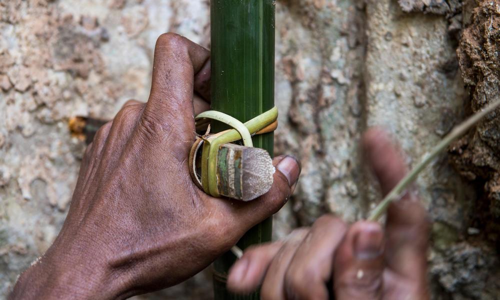 Honey famer_Talang Mamek tribe_Thirty Hills_Sumatra