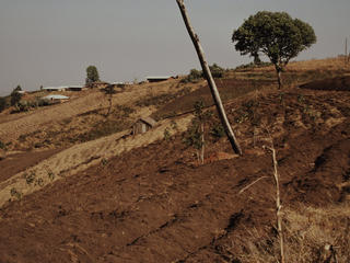 Impacts of unsustainable agriculture