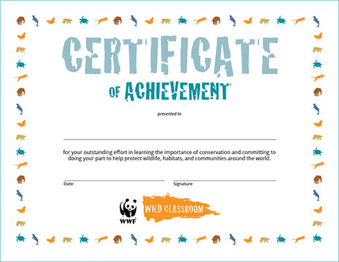 Food Waste Warrior Toolkit  Educators Toolkits  Wwf Reward Your Students Completion Of The Toolkit With This Printable Pdf  Certificate