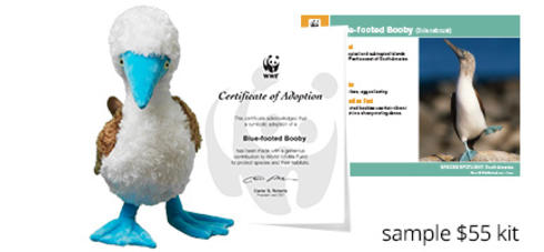 Blue-footed Booby Plush and Adoption Certificate
