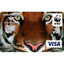 Bankofamerica tigercard web