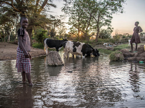 Children water their livestock in lower Loita, Kenya