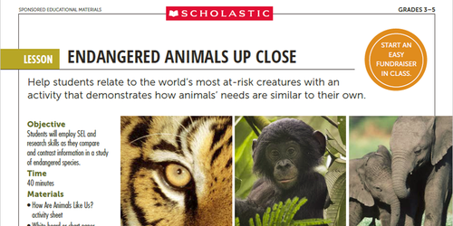 Scholastic Activity Lesson Screenshot