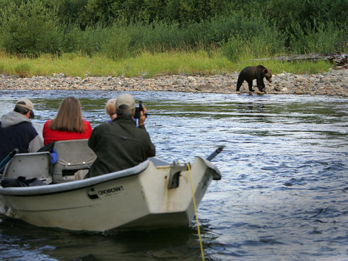 People in boat with bear on shore