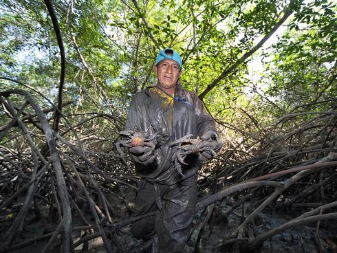 Santo Yaguall, a mud crab fisher in Isla Escalante