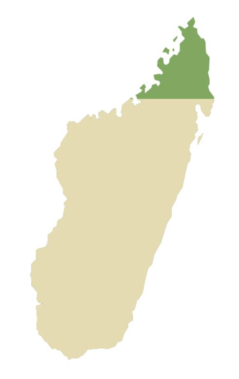 Madagascar outline