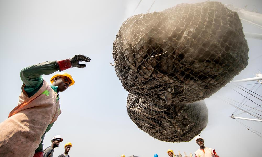 Unloading a fishing net