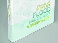 flood management book