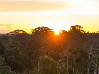 peruvian amazon sunset WW1103396 Day's Edge Productions
