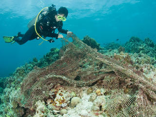 Diver removing ghost net from coral reef