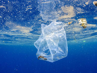 A plastic bag underwater