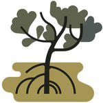 Vector illustration of mangrove forests in Miani Hor, Pakistan