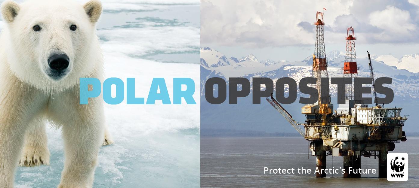 Polar Opposites PSA that shows a polar bear juxtaposed against an oil rig