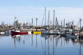 Fishing boats, Bay of Fundy, New Brunswick, Canada